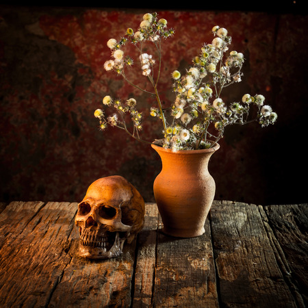 Still Life with a Skull and vase,earthenware Stock Photo