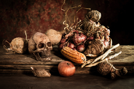 cadaver: Still Life with a Skull and fruit on wooden Stock Photo