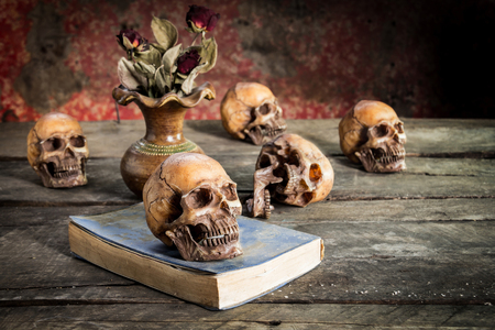 cadaver: Still Life with  Skull and book on wooden table,