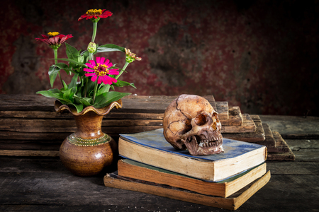 cadaver: Still Life with  Skull and book,flower vase on wooden table Stock Photo