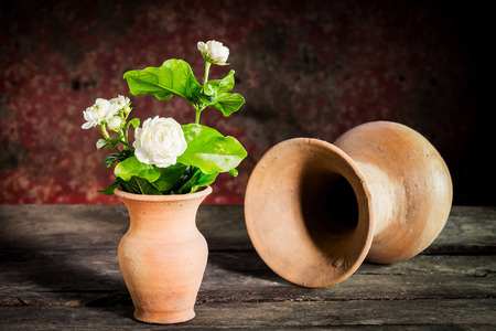 still life.jasmine flower in vase on wooden