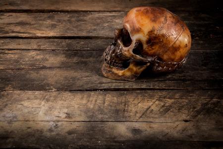 cadaver: Human skull on old wood background, still life