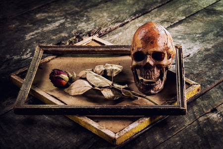 still life with human skull and roses dried in a picture frame on the old wooden background