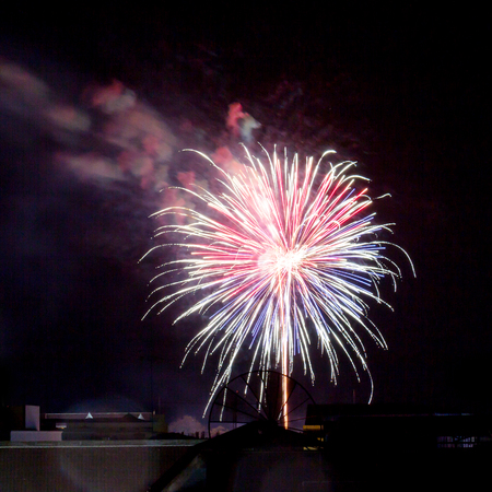 dazzling: Fireworks light up the sky with dazzling display