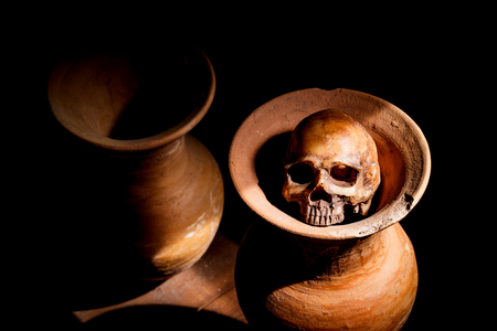 cadaver: Still Life with a Skull and vase,earthenware Stock Photo