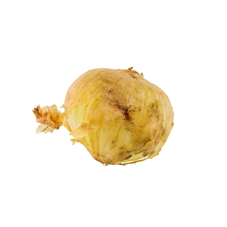 onion isolated: Onion isolated on white background