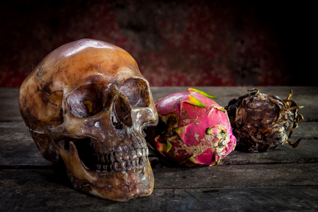 corpses: still life with skull human and dargon fruit on old wooden table.