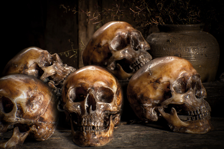 cadaver: Human skull on old wood background, still life concapt Stock Photo