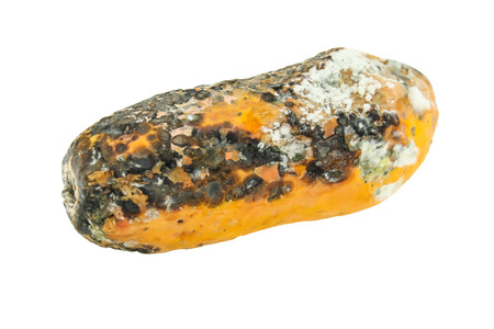 rotten papaya isolate on white background