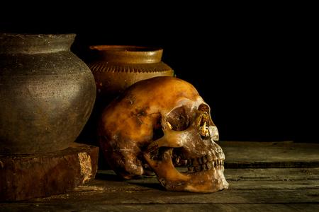 Nature morte avec crâne et vase, faïence sur fond en bois