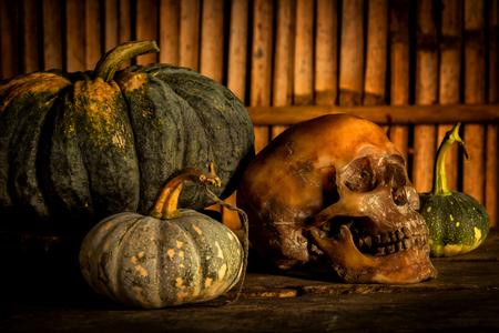 Still Life with Pumpkin and Skull