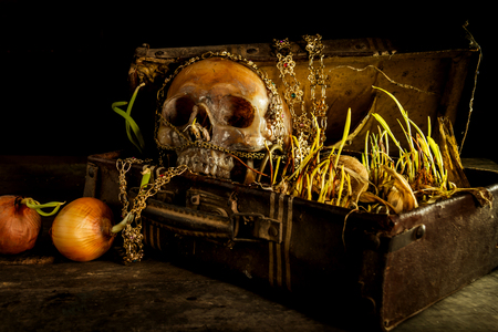 Still life with human skull with old treasure chest and gold, diamond, jewelry,corn shoots, onion shoots on wooden table background