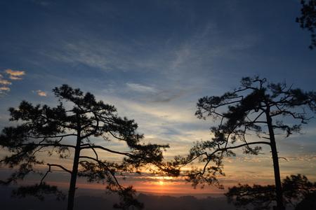 phukradueng: Morning sunshine on Phu Kradueng