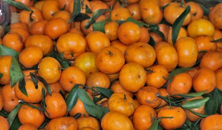 distinct: Small orange with a distinct sweetness . Stock Photo