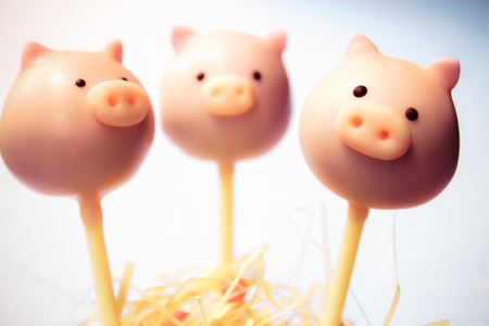pig cake pops in cup on white background