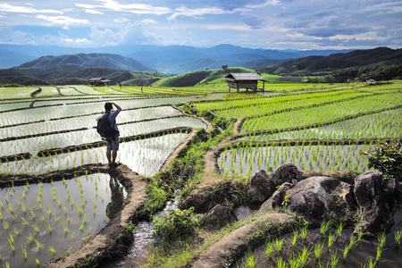 Tourists were taking rice terraces Stock Photo