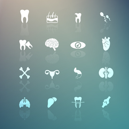 Body Icons  set on Retina background Vector