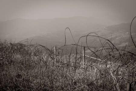 landscape Tangled barbed wire in the Vietnam War Archivio Fotografico