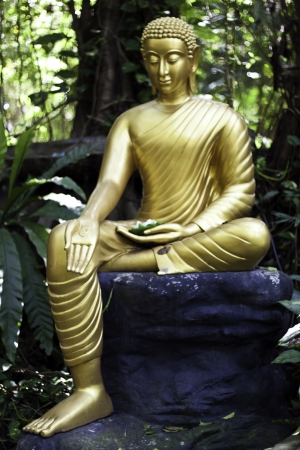ancient yoga: This picture shows the mercy of Golden Buddha to the creatures. Wehn we look at this, we can feel the calm and purity of our minds from the inner self. Stock Photo