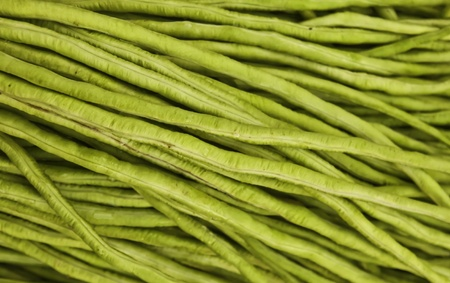 Yard Long bean is the important ingredient of Som-tam (Thai Stock Photo