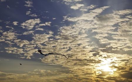 buoyancy: Kite representa la libertad de la flotabilidad en el cielo azul claro con la esperanza y la alegr�a de la vida.