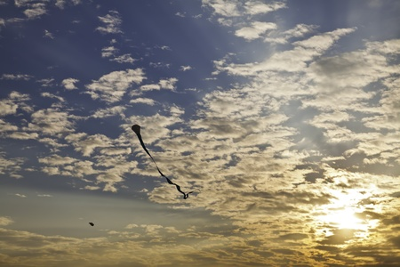 buoyancy: Kite represents freedom of buoyancy in the blue clear sky with hope and joy of life. Stock Photo
