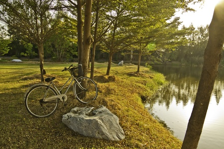The bicycle is in rest at side of the peaceful pond in the sunsetsunrise time.