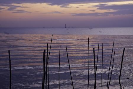 The seaside landscape of Bangpu Thailand on beautiful November. photo
