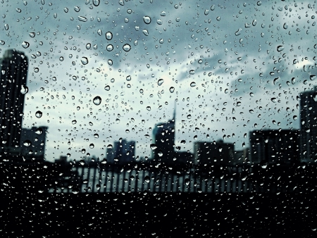The noir city in the soaking souls.