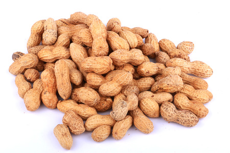 monkey nuts: Monkey nuts, peanuts or groundnuts in shells, isolated on a white background
