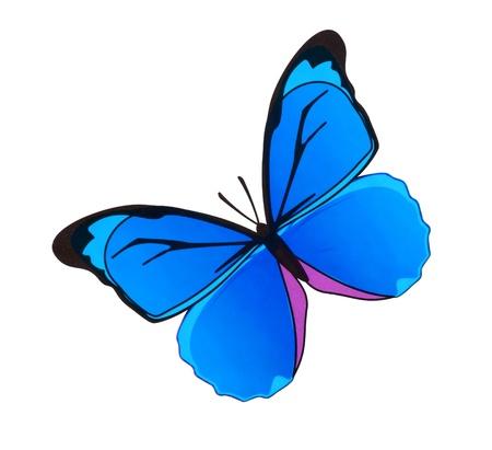 Pintar mariposa acuarela sobre fondo blanco Foto de archivo - 9442243