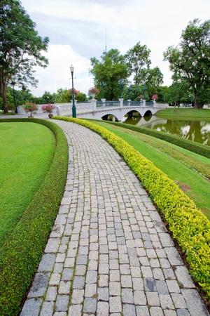 walkway in garden photo