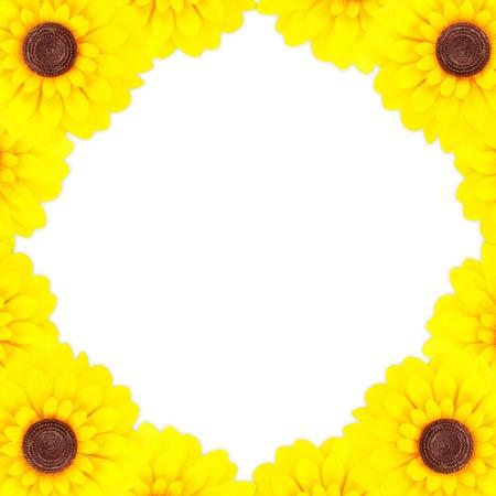 sunflower frame photo