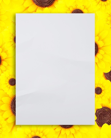 paper on the sunflower background Stock Photo - 9659385