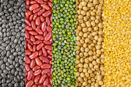 Beans collection as the background Stock Photo - 12624353