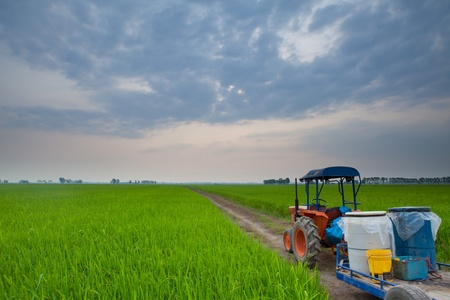 plows: tractor in meadow green countryside on sunset
