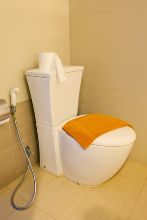 Modern home flush toilet in Bathroom photo