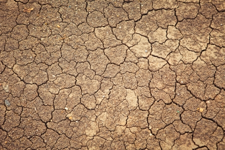 Dry cracked earth background, clay desert texture photo