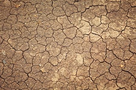 pustynia: Suchy pęknięty tło ziemia, tekstura pustynia glina