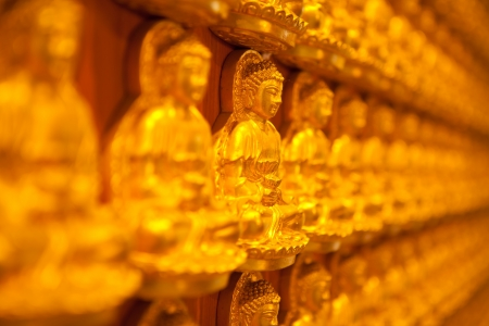 golden Image buddhas lined up along the wall of buddhist temple photo