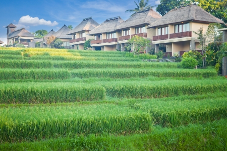 Rice terrace and village in Cordillera mountains in Bali Indonesia