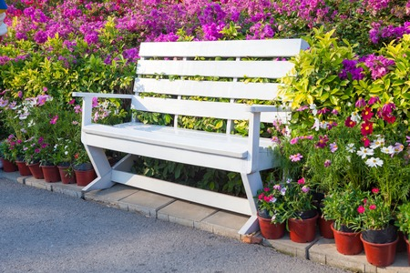 garden bench: bench in the park with flower outdoor Stock Photo