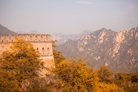 Great Wall of China in autumn Wall is among the wooded hills
