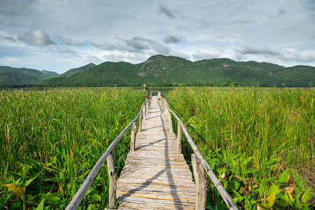 Wooden path with mountain and blue sky 免版税图像