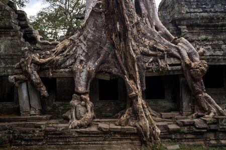 ancient of Prasat Preah Khan temple, in Siem reap, Cambodia