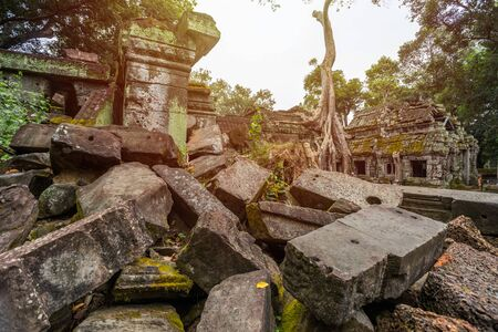 ancient of Prasat Ta prohm temple, in Siem reap, Cambodia