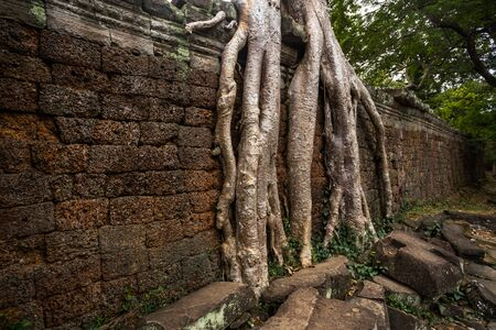 ancient of Prasat Preah Khan temple, in Siem reap, Cambodia