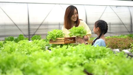 Mère avec fille la récolte de légumes biologiques à la ferme