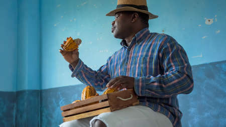 Portrait of a happy African American man carrying a box of fresh Cacao Standard-Bild