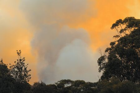 Organised Fire Service back burning to prevent bush fires in the mountains.